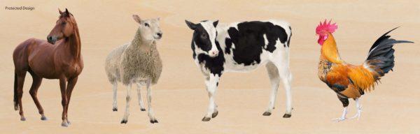 Giant Farm Animals Puzzle (4pcs)-0