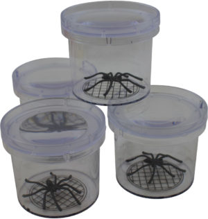 Durable Bug Eye (4pcs)-0