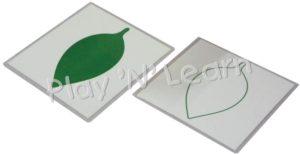 Leaf Cards-0