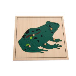 Frog Puzzle (5pcs)-0