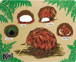 Kiwi Life Cycle Puzzle (11pcs)-0