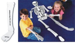 Skeleton Floor Puzzle 130cm (15pcs)-0