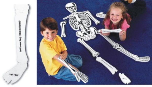 Skeleton Floor Puzzle 130cm (15pcs)-0