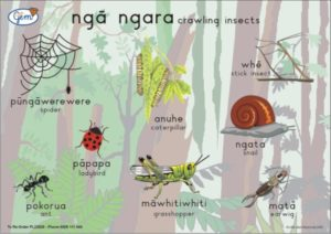 Crawling Insects Poster Maori-0