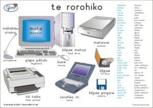 The Computer Poster Maori-0
