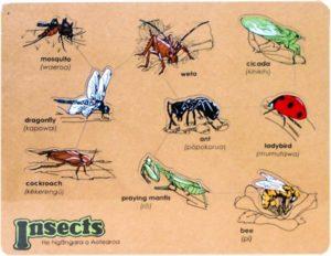 He Ngangara o Aotearoa Insects Puzzle (9pcs)-0