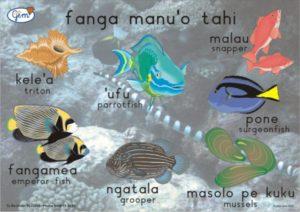 Small Fish Poster Tongan-0