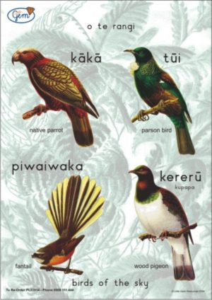 Birds of the Sky Poster Maori-0