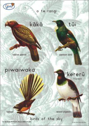 Birds of the Sky Poster Maori-0