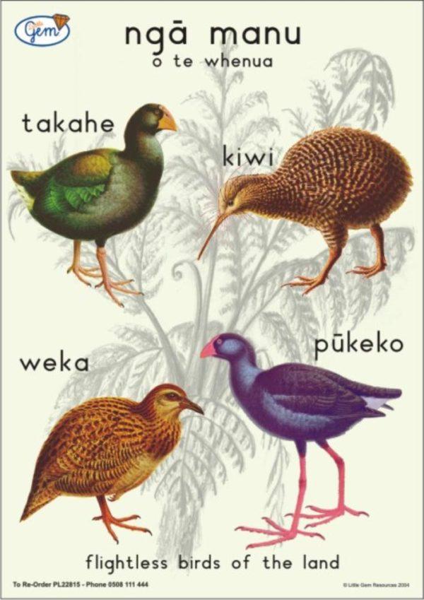 Birds of the Land Poster Maori-0
