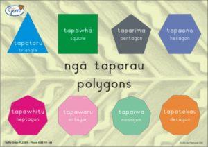 Polygons Poster Maori-0