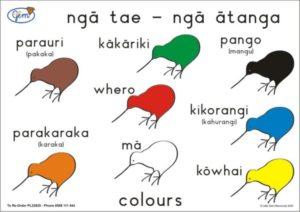 Colours Poster Maori-0
