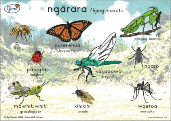 Flying Insects Poster Maori-0
