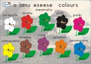 Colours Poster Samoan-0