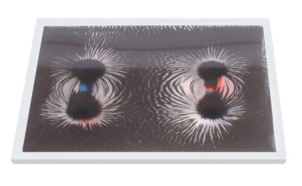 Magnetic Field Pattern Window Transparent-8493