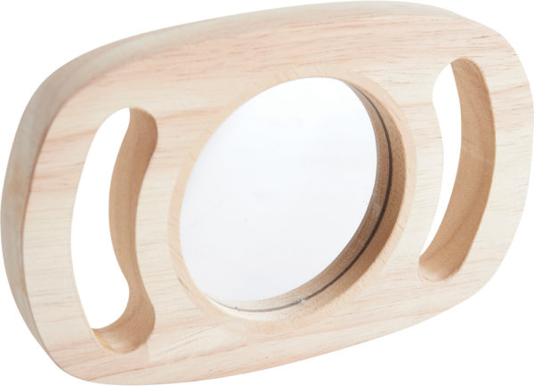 Easy Hold Plane Mirror-13598