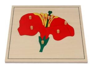 Flower Puzzle (8pcs)-0