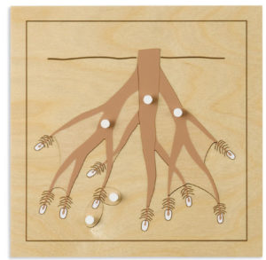 Root Puzzle (5pcs)-0
