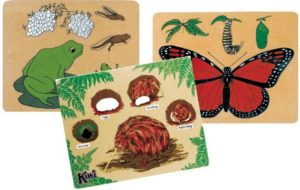 Life Cycle Puzzle Set (3pcs)-0