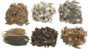 Natural Feathers Classroom Pack-0