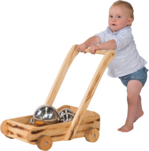 Tiny Tots Wooden Wagon-0