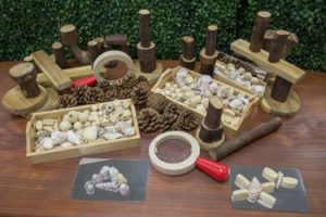 Natural Loose Parts Play Set (210pcs)-0