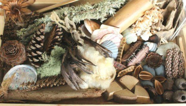 Natural Treasure Tray Nature/Science-0