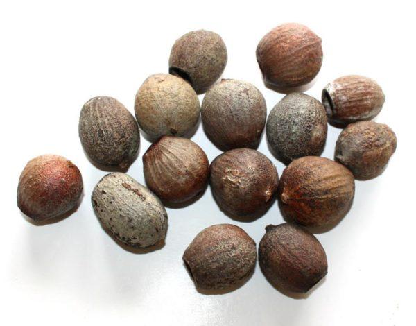 Natural Gum Nuts -0