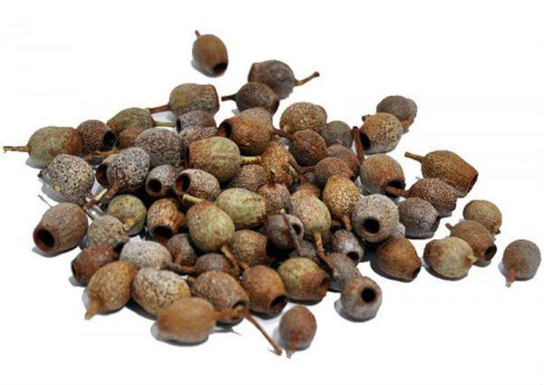 Natural Gum Nuts-0