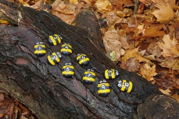 Honey Bee Number Stones (20pcs)-0