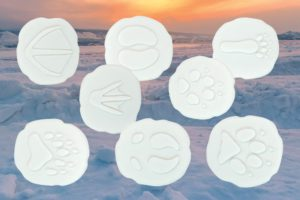 Let's Investigate - Polar Footprint Stones (8pcs)-0