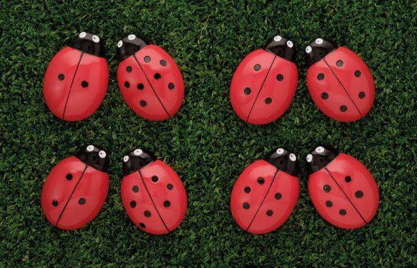 Ladybugs Counting Stones (22pcs)-0
