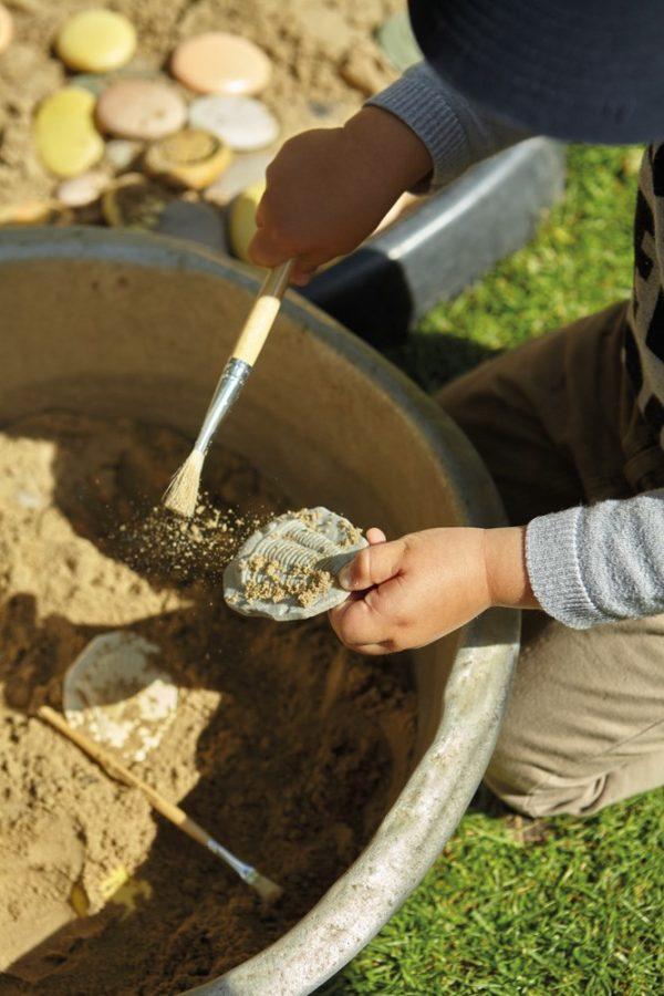 Let's Investigate - Fossil Stones (8pcs)-0